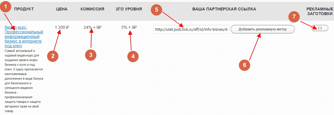 zarabotok-na-partnerke-aleksandra-masterkova-6
