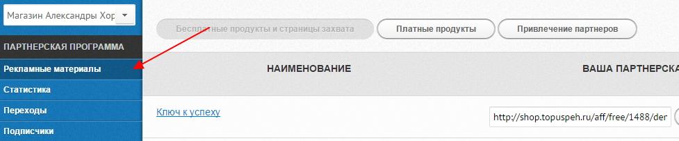 zarabotok-na-partnerke-aleksandry-xoroshilovoj-3