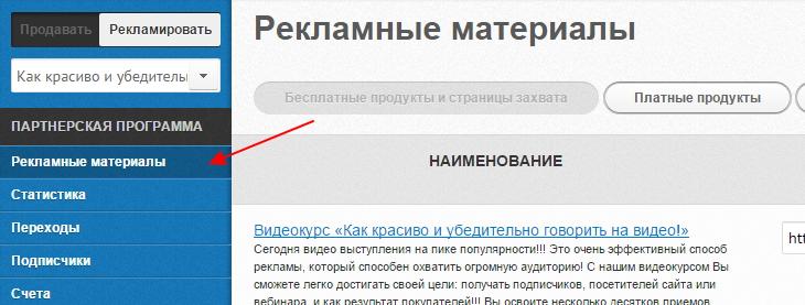 zarabotok-na-partnerke-iriny-shilovskoj-3