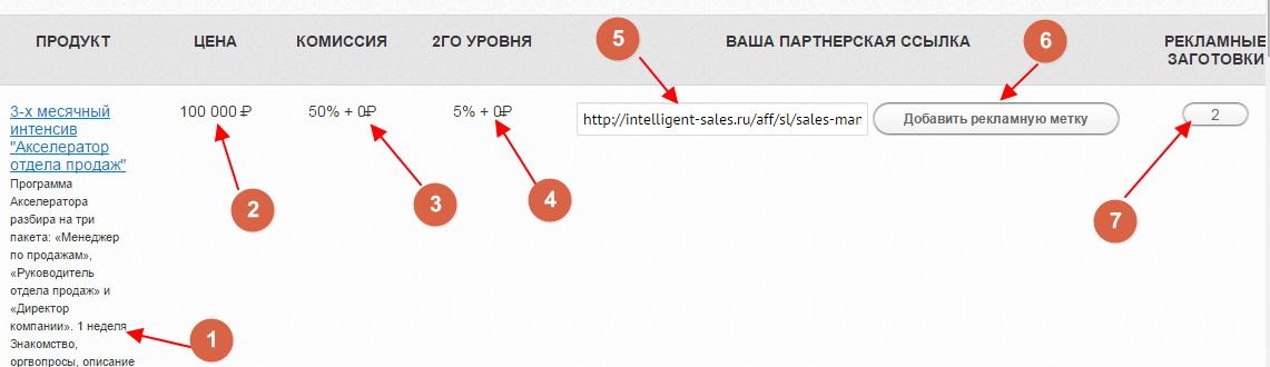 zarabotok-na-partnerke-shkola-intelligentnyx-prodazh-8