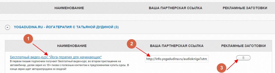zarabotok-na-partnerke-tatyany-dudinoj-6