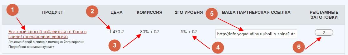 zarabotok-na-partnerke-tatyany-dudinoj-8