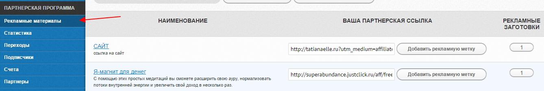 zarabotok-na-partnerke-tatyany-ell-3
