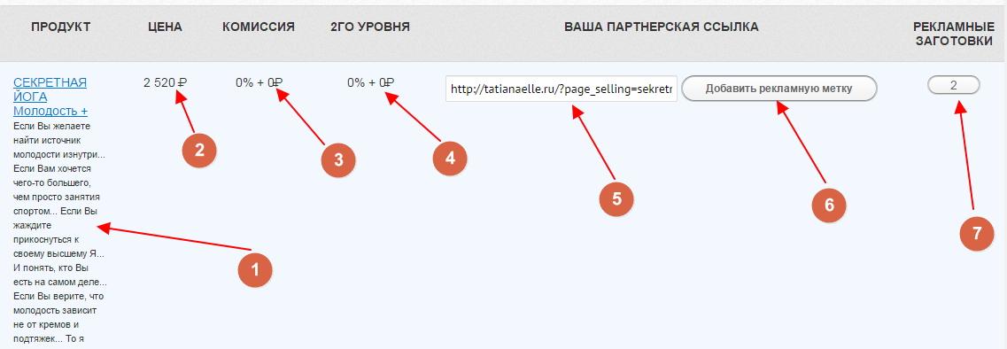 zarabotok-na-partnerke-tatyany-ell-8
